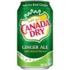 Can of ginger ale